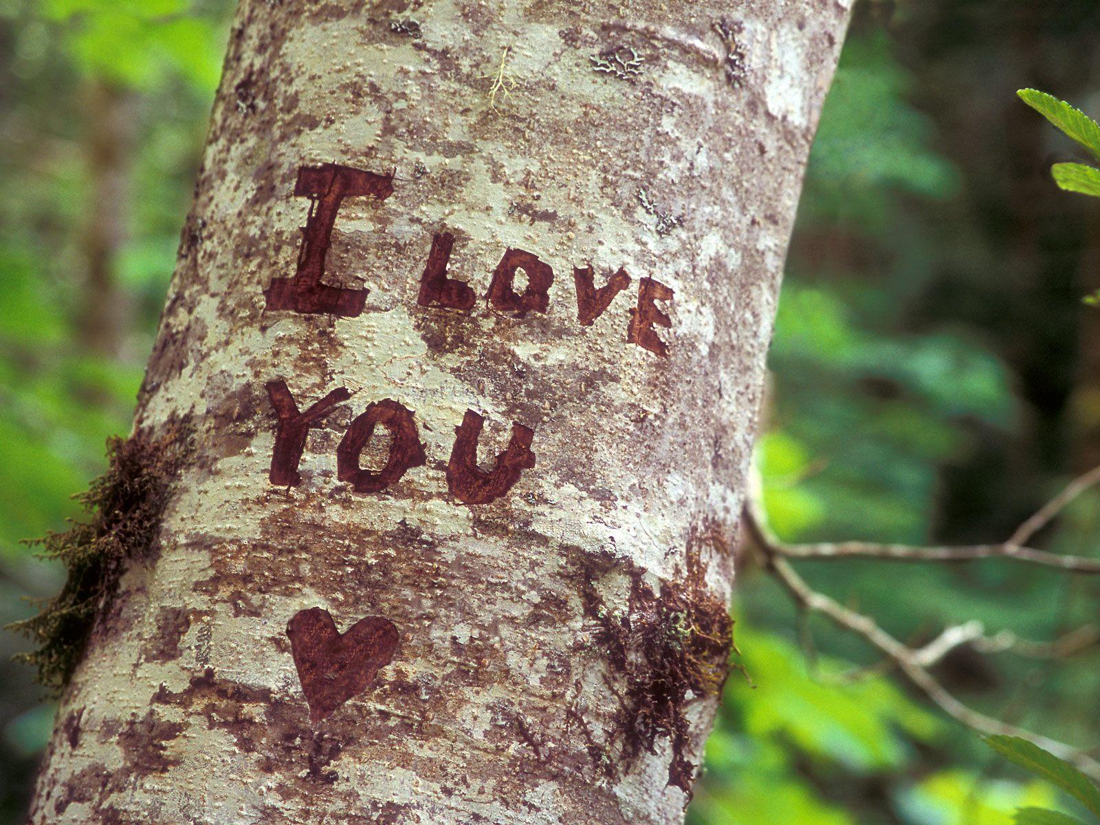 I love you fba vsve httrkp letlts voltagebd Images